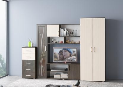 Мебель для гостиной №10